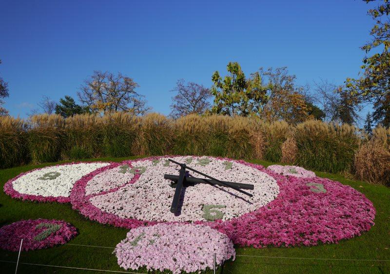 Horloge fleurie de Genève